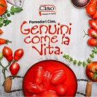 Tomato and sauce 1-1 (7)