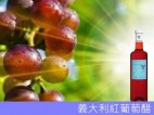 Oil vinegar 1 (15)